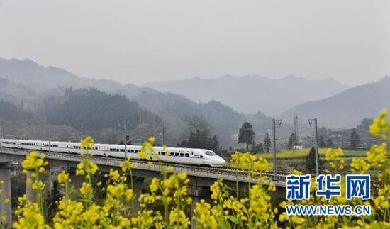 2015年1月20日,一列贵广高铁动车经过贵州省榕江县境内的一片盛开的油菜花。 新华社发(王炳真 摄)