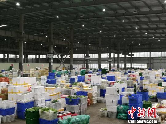 海口市菜篮子集团已分拣好40个品种共计100吨的蔬菜,待台风过境风力减弱之后立即配送至零售网点。 王子谦 摄