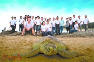 海龟保护队。