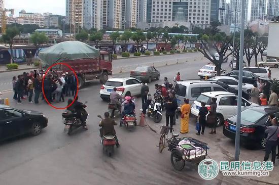 女子因爱犬被撞死逼司机下跪 民警劝解反遭厮打