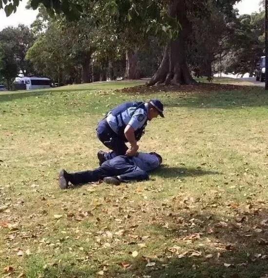 新南威尔士州警方(本地警方)确认,两人其时是在动物园中对着一棵树小便。
