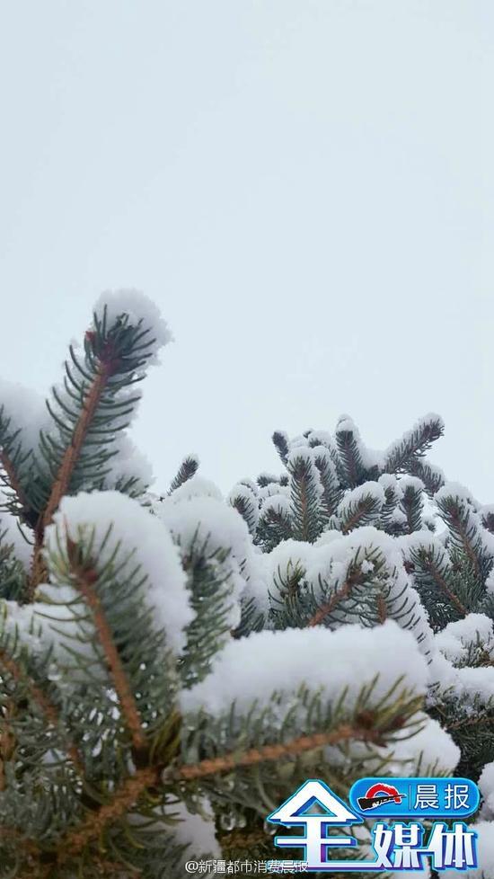 雪后的乌鲁木齐