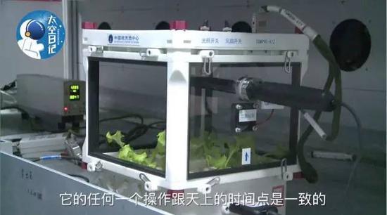中国人在太空种菜
