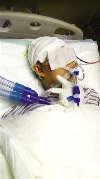 伤者魏成贺躺在医院至今仍昏迷不醒,未度过危险期。