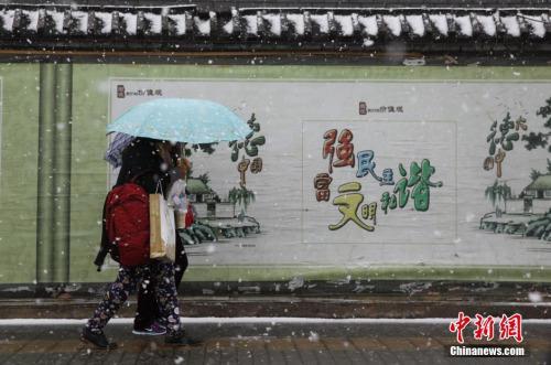 资料图:2015年11月6日,北京迎来入冬首场降雪。中新社记者 杨可佳 摄