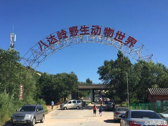 北京遭虎袭女游客起诉动物园 将申请提级管辖 新闻 第3张
