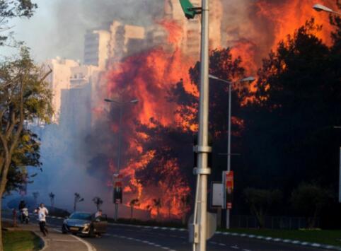 以色列海法火灾严重 中国使馆租大巴撤离留学生 文化 第1张