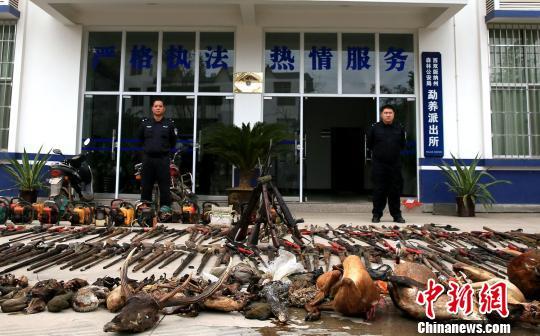 图为向当地群众现场展示依法收缴的野生动植物死体、制品,以及枪支、油锯和刀具等违法涉案工具 常宗波 摄