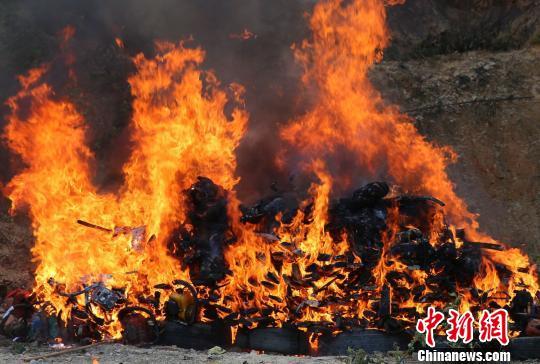 图为公开焚毁野生动物制品及枪支 常宗波 摄