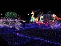 大兴月季主题园化身彩灯王国迎新年