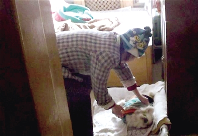 74岁的孙阿姨蹲下身为狗狗按摩