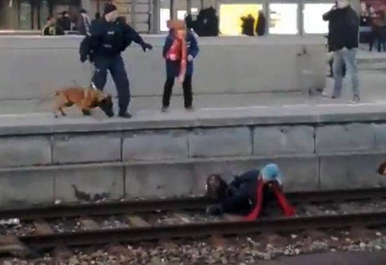 德国一警犬突然狂性大发 将无辜女子推下铁轨