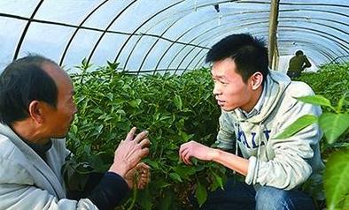 耶鲁毕业村官秦玥飞获2016年度感动中国人物