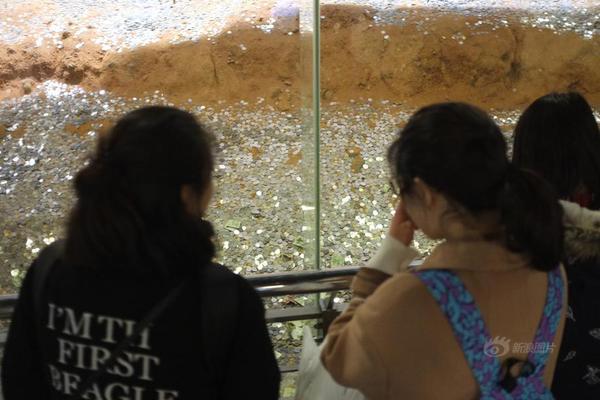 雷峰塔遗址变身金银岛 数万现金覆盖古迹