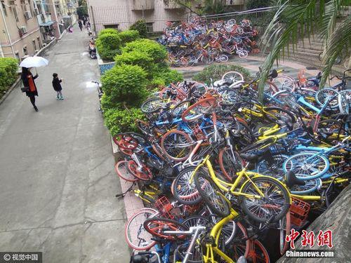 2017年1月16日,广东深圳南山区,深圳蛇口湾厦山公园出入口,出现大面积人为破坏的共享单车。图片来源:视觉中国