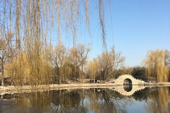 昨天,北京气温回升,天气晴好。(图片来源:新浪微博)