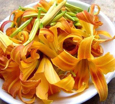 鲜黄花菜中含有秋水仙碱。资料图
