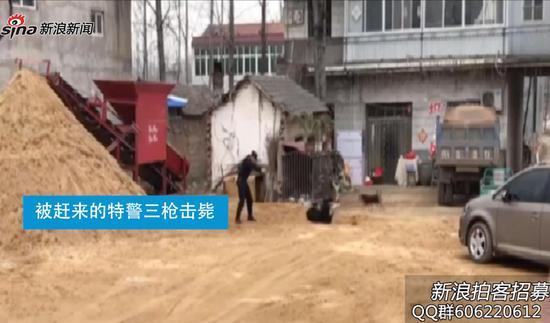 实拍:藏獒发狂咬人  被特警三枪击毙