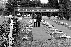 昨天,北京市长青园公墓举办自然葬安葬仪式。 首席摄影记者