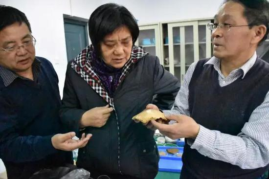 """3月7日,李占扬(右一)和中科院古环境专家研究""""许昌人""""化石"""