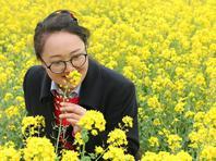 黄河两岸油菜花、桃花进入盛花期