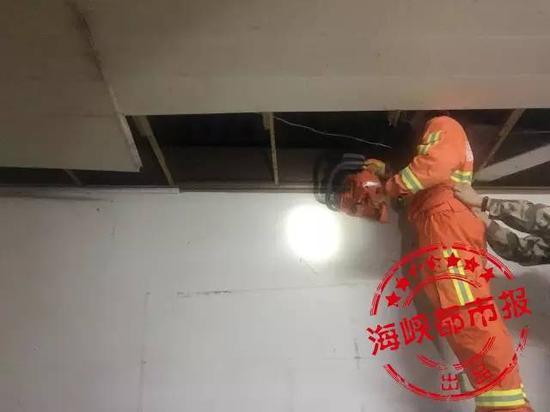 有点像赵薇的上海大学校花