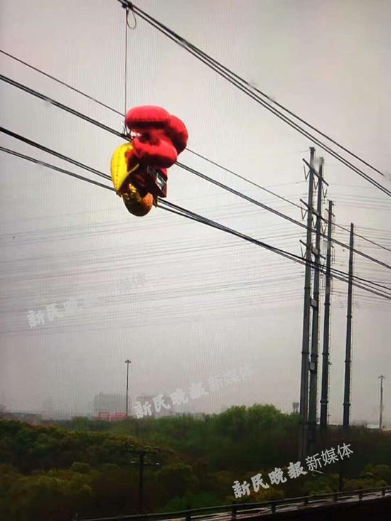 图说:由于气球飘入了运营线路,缠绕触网,对正常运营造成了影响上海地铁供图