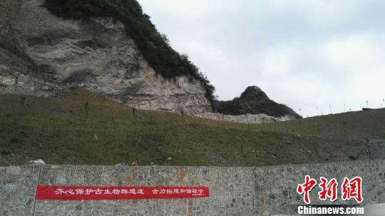 北京赛车网投操盘