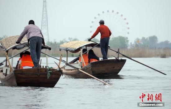 游船驶出白洋淀游船码头。中新社记者 毛建军 摄