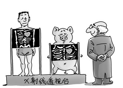 视觉中国供图。