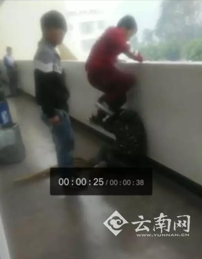 小学生惨遭同学暴打