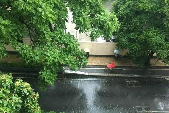 △广州雨水再度来袭