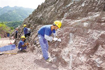 重庆云阳恐龙化石墙考古现场刘嵩摄