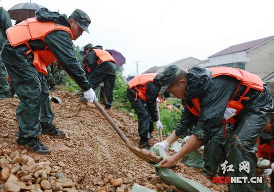 益阳资江,官兵们正在封堵管涌。杨宁摄