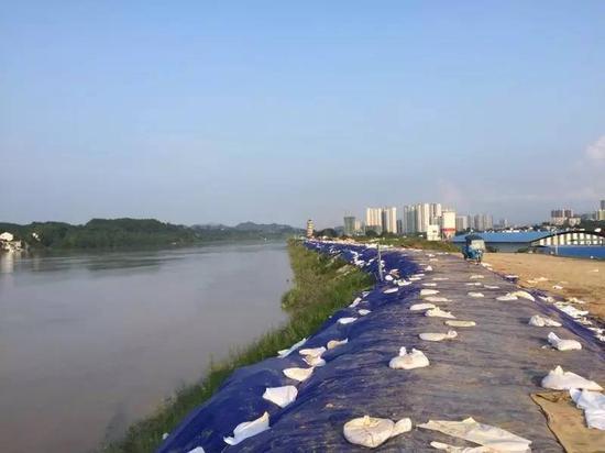 新加固的梅堤,1996年曾发生溃堤,发生特大洪水。新京报记者安钟汝 摄