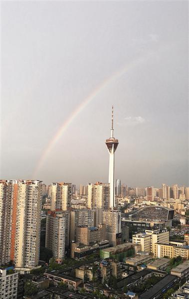 昨日雨后,彩虹挂在成都天空。本文图片 成都商报