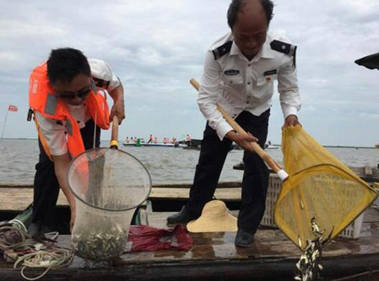 7月13号洪湖开始史上最大规模增殖放流。 本文图片 长江云客户端