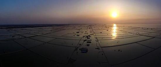 洪湖里曾经的围网似迷魂阵,蚕食着大湖水面。