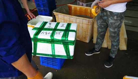 洪湖的生鲜水产品通过快递运往全国各地。