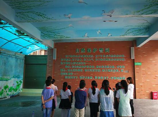 洪湖市第一小学是国际组织湿地国际授牌的湿地保护学校。