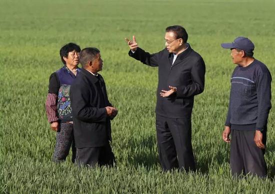 图为2017年4月20日下午,李克强在山东济南曲家村察看春季小麦长势。