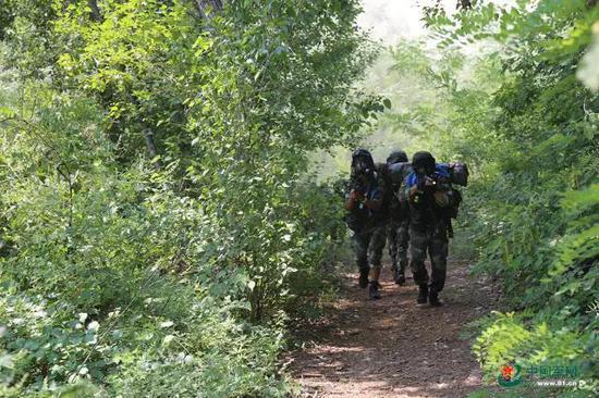 魔鬼周训练,几名特战队员全副武装搜索前进