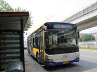 北京新开6条公交专线 31条线路优化调整