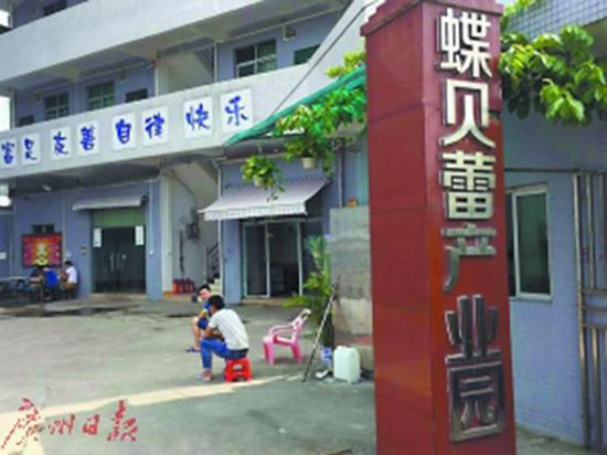 位于白云区龙归园夏村的蝶贝蕾公司。 广州日报 图