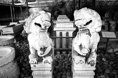 文保人士李先生2016年1月参观圆明园流散文物展时,拍摄的这对石狮子口中各含有两颗石球。李先生 供图