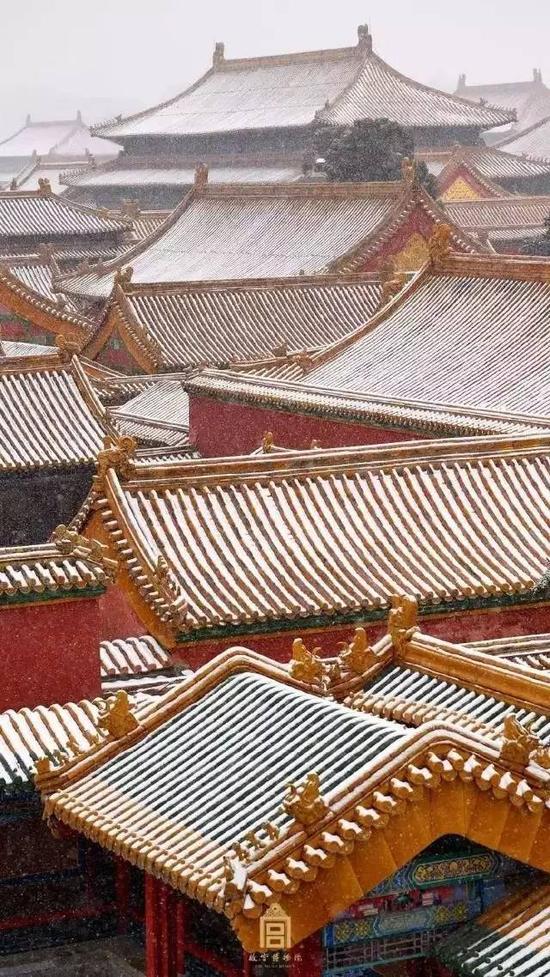 每一个黄皮肤、黑头发的中国人,都应该去紫禁城里走一走。