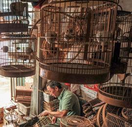 成都残疾手艺人十年单手编鸟笼