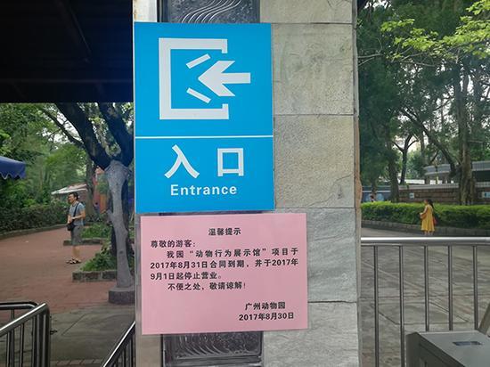 广州动物园在入口检票处张贴的通知告示。 本文图片 澎湃新闻实习生 荣思嘉 图