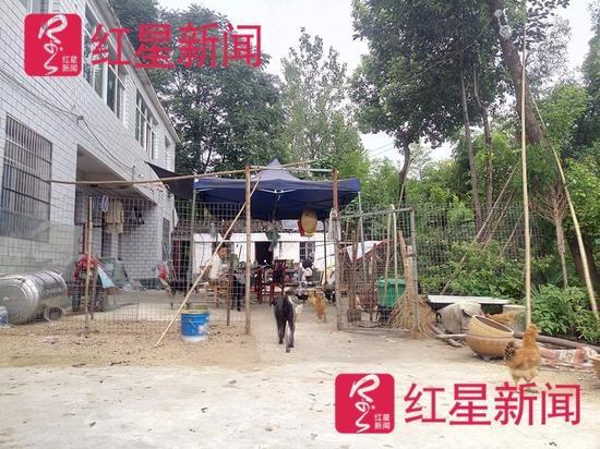 ▲邓超租下汉子山村闲置的农房,过起了田园生活。
