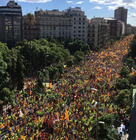 约有100万人参加了当天的游行。(图片来源:今日俄罗斯网站)